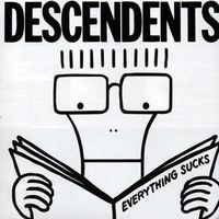 Descendents merchandise