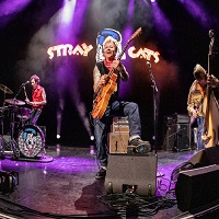 Stray Cats Tickets