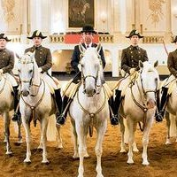 The Spanish Riding School Of Vienna tour dates and tickets