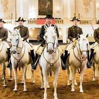 Lipizzaner Stallions Tour 2020 The Spanish Riding School Of Vienna Tour 2019/2020   Track Dates